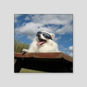 """American Eskimo Dog Square Sticker 3"""" x 3"""""""