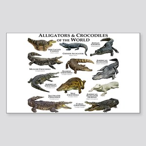 Alligator & Crocodiles of the World Sticker (Recta