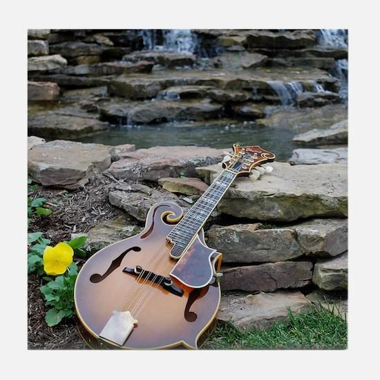 iPad_Ibanez_Waterfall Tile Coaster