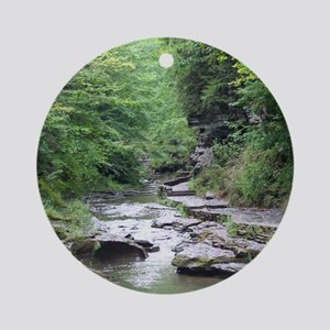 forest river scenery Ornament (Round)