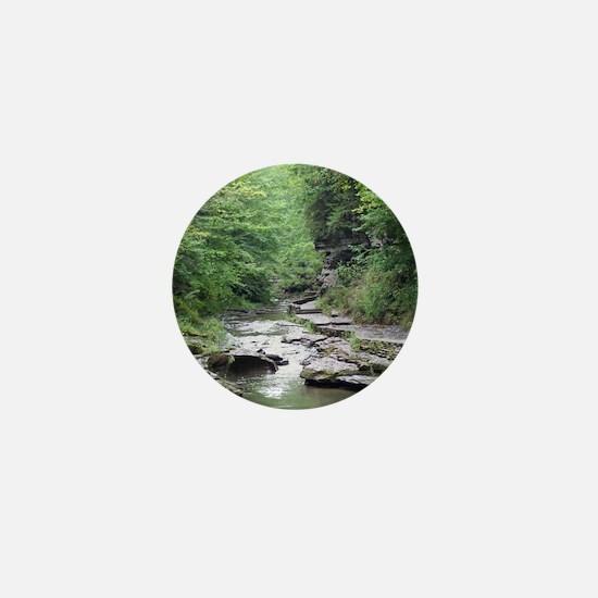 forest river scenery Mini Button