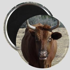 texas.bull.WE_THOMAS Magnet