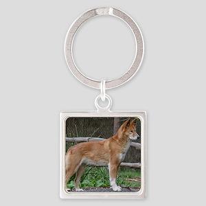 Australian Dingo 9Y209D-268 Square Keychain