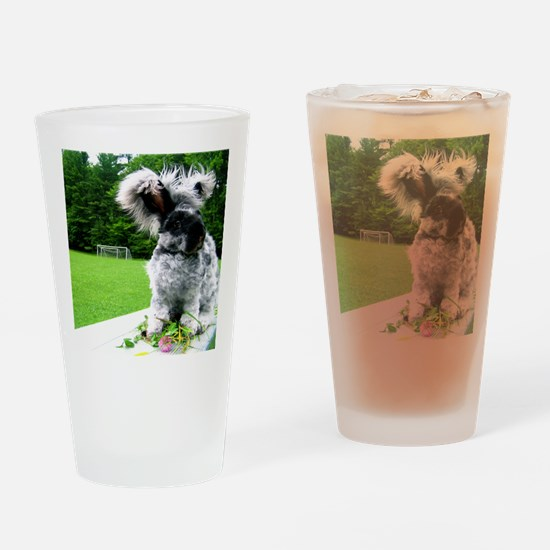 augnew Drinking Glass