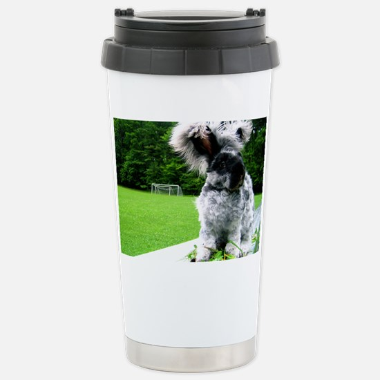 augnew Stainless Steel Travel Mug