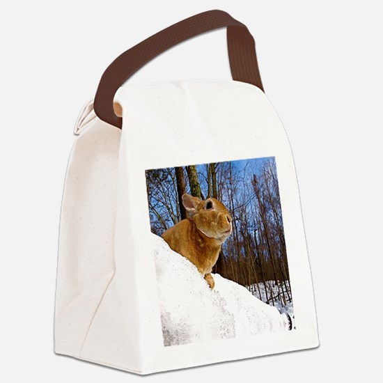 marchnew2 Canvas Lunch Bag