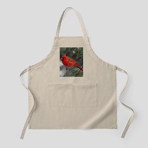 Male Cardinal 02-02-10 340 Apron