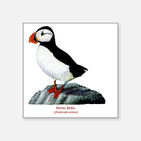 "Atlantic Puffin Square Sticker 3"" x 3"""