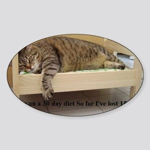 fatcat Sticker (Oval)