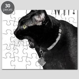WTFgraphic Puzzle