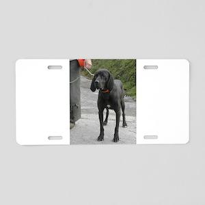 plott hound full second Aluminum License Plate