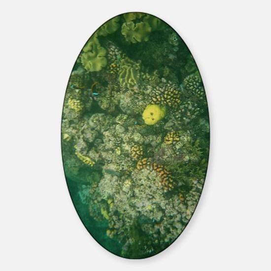 Great Barrier Reef Sticker (Oval)
