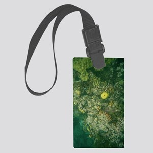 Great Barrier Reef Large Luggage Tag