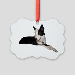 tillymugshot Picture Ornament