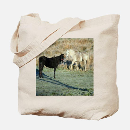 seventeenth download 233edtwo Tote Bag
