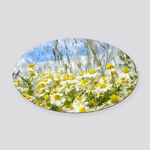 Painted Wild Daisies Oval Car Magnet