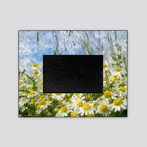 Painted Wild Daisies Picture Frame