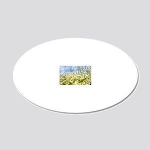 Painted Wild Daisies 20x12 Oval Wall Decal