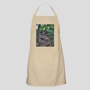 Long Walk to Forever Journal Apron