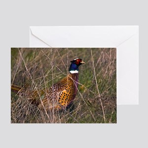 (6) Pheasant  407 Greeting Card