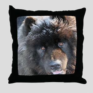 IMG_0389 kona 18x24 coC Throw Pillow