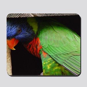 Parrot Calendar Mousepad