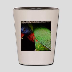 Parrot Calendar Shot Glass
