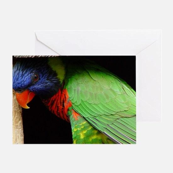 Parrot Calendar Greeting Card