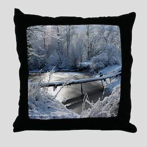 IMG_3344 24x18 co C Throw Pillow