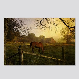 Early Morning Light Postcards (Package of 8)