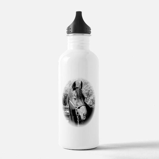 REX 2 Water Bottle