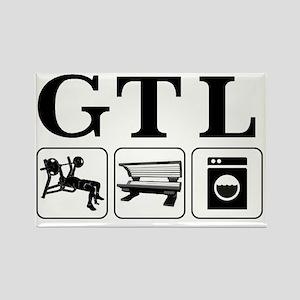 GTL1 Rectangle Magnet