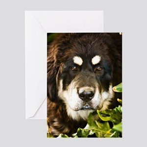 tibetcandi68 Greeting Card