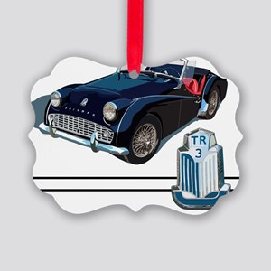 TR3-blk-10 Picture Ornament