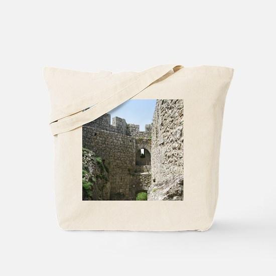 ruinsFrance01 Tote Bag