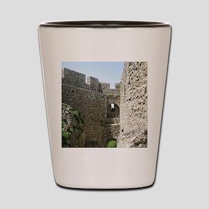 ruinsFrance01 Shot Glass