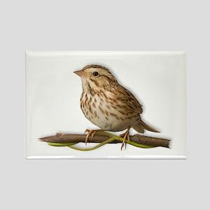 Savannah-Sparrow-white-text Rectangle Magnet