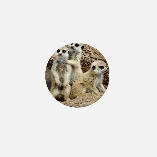 I LOVE MEERKATS! Mini Button