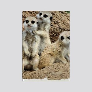 I LOVE MEERKATS! Rectangle Magnet