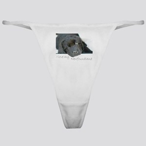 I love my Newfoundland puppy Classic Thong