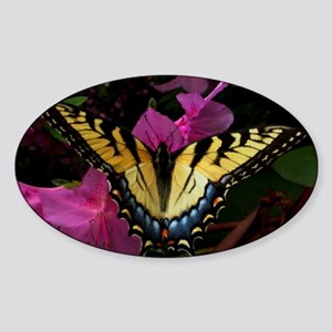 Butterfly Sticker (Oval)
