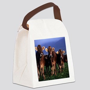 blanket11 Canvas Lunch Bag