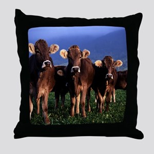blanket11 Throw Pillow