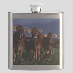 blanket11 Flask