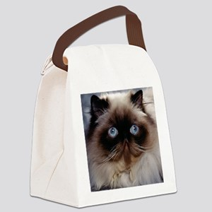 blanket14 Canvas Lunch Bag