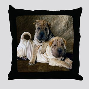 blanket27 Throw Pillow