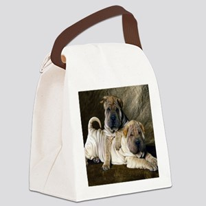 blanket27 Canvas Lunch Bag