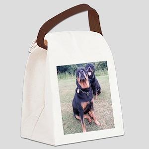 Tetley Canvas Lunch Bag