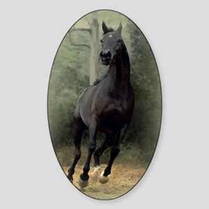 blanket45v Sticker (Oval)