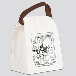 1974_groundhog_cartoon Canvas Lunch Bag